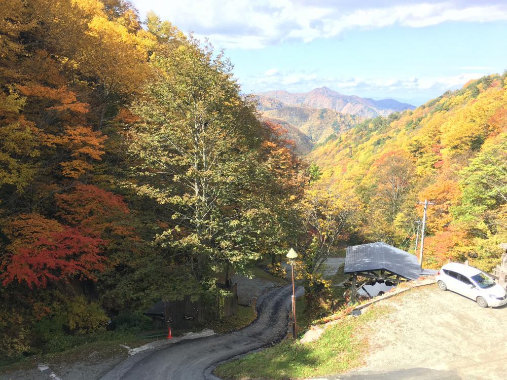 【通常営業中】台風19号一過し平穏な秋に戻りました。