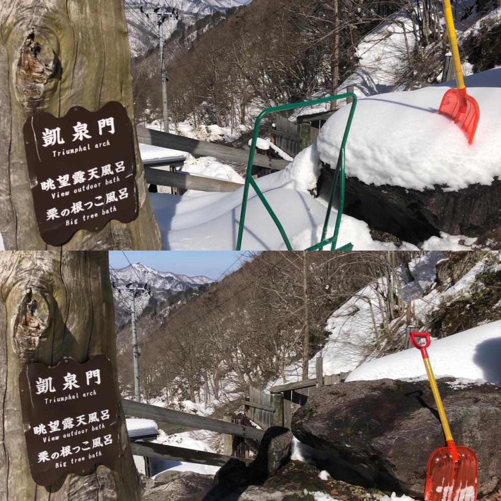 春♪→冬→春♪ 三歩進んで二歩下がる。 今週末は春(*^^*):画像