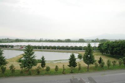 大町さくらんぼ園を見回しました!:画像