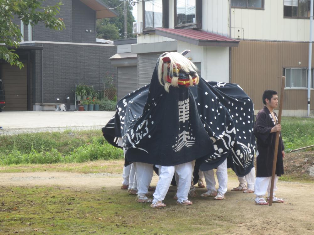葉山神社のお獅子