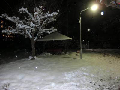 雪灯りと俵万智と・・