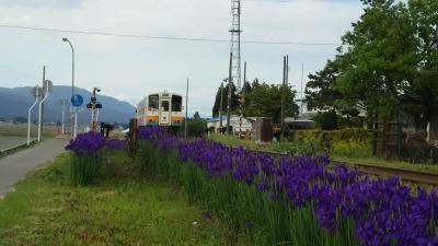 長井線に高貴な藍ライン