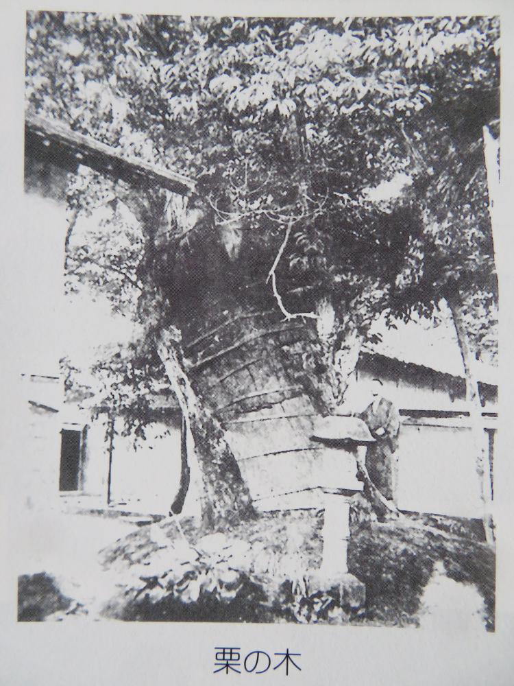 成田村伝説  №3.わさやの怪盗 (7)