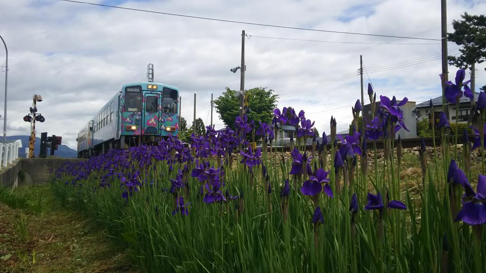 地に紫の詩が残る