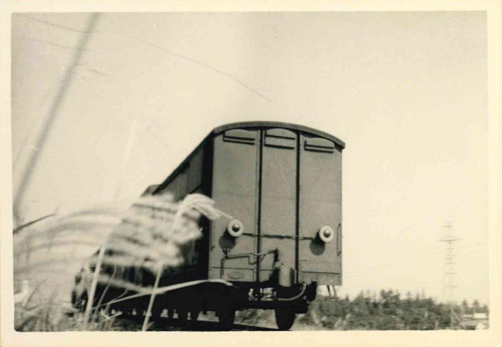 貨物列車の背中