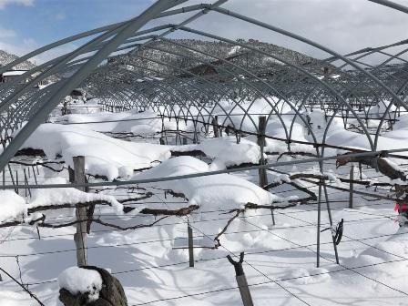 「雪下ろし」の画像