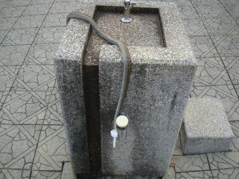 蛇の死亡現場 [米沢総合公園]