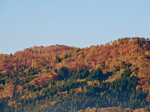 なでら(斜平)山の紅葉