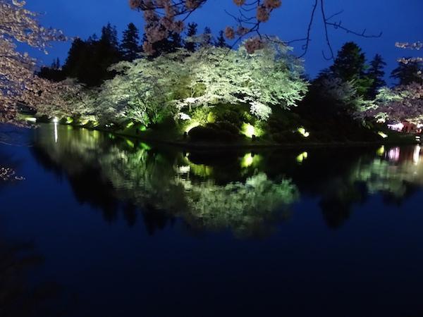 2018-4-17 夜桜