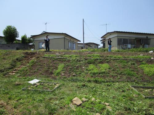 夏向きに「除草作業」の実施