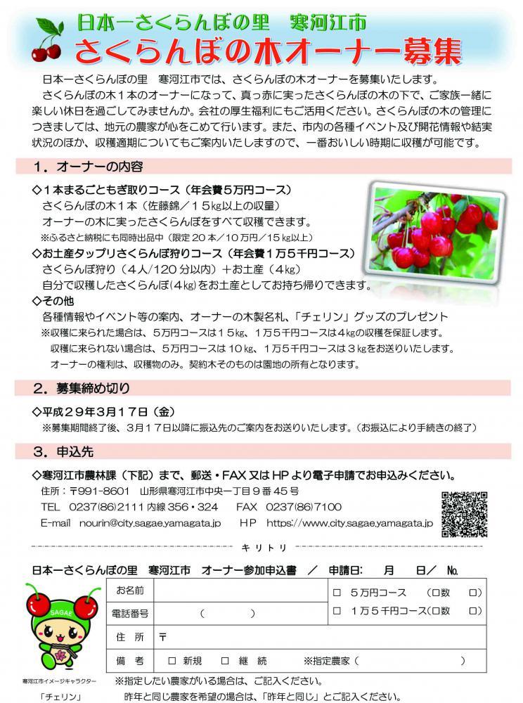 さくらんぼの木オーナー募集!:画像