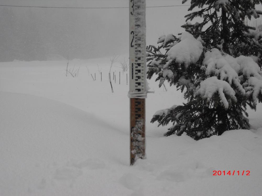 1月上期の予定 (今日の天気・積雪0.8m時々吹雪)