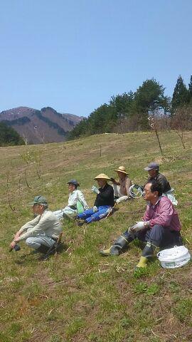 5月下期の予定・古代の丘に花見山をつくろう/