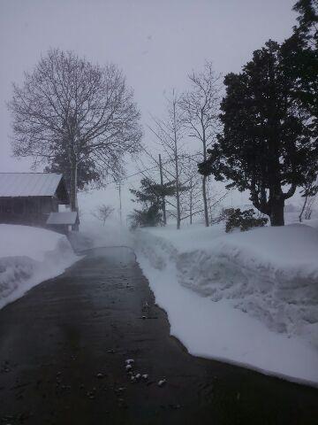 突風と吹雪の置農同窓会入会式/