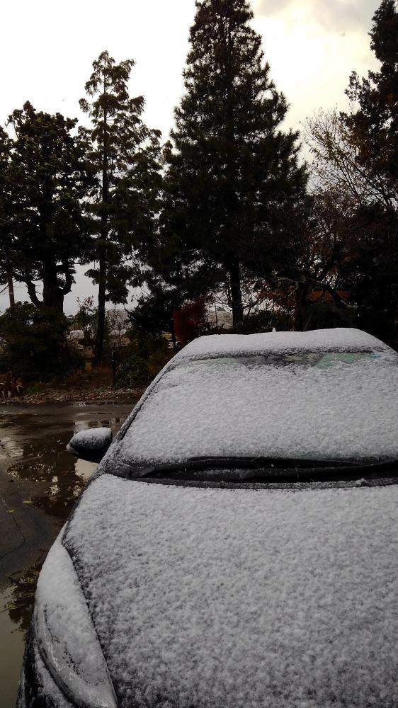 ついに初雪到来す