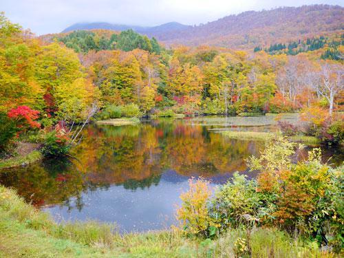 月山地蔵沼の紅葉〜2015.10.12:画像
