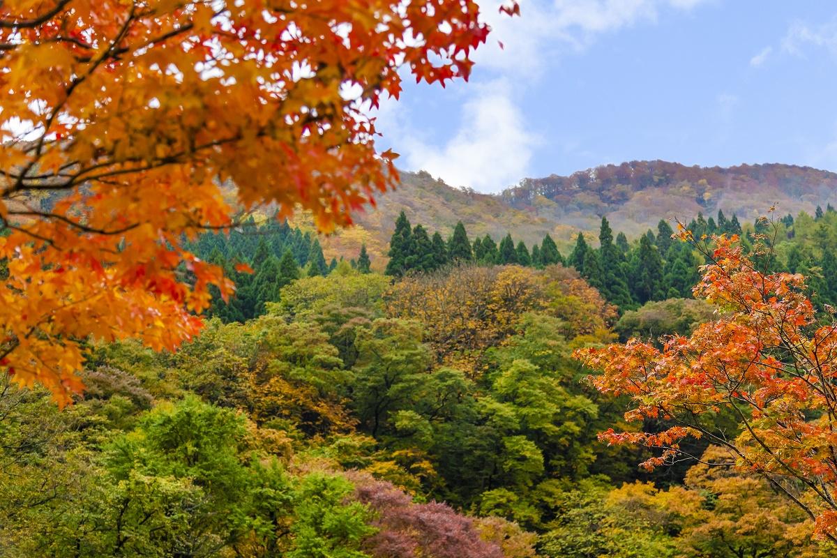 瀬見温泉付近の紅葉時期:画像