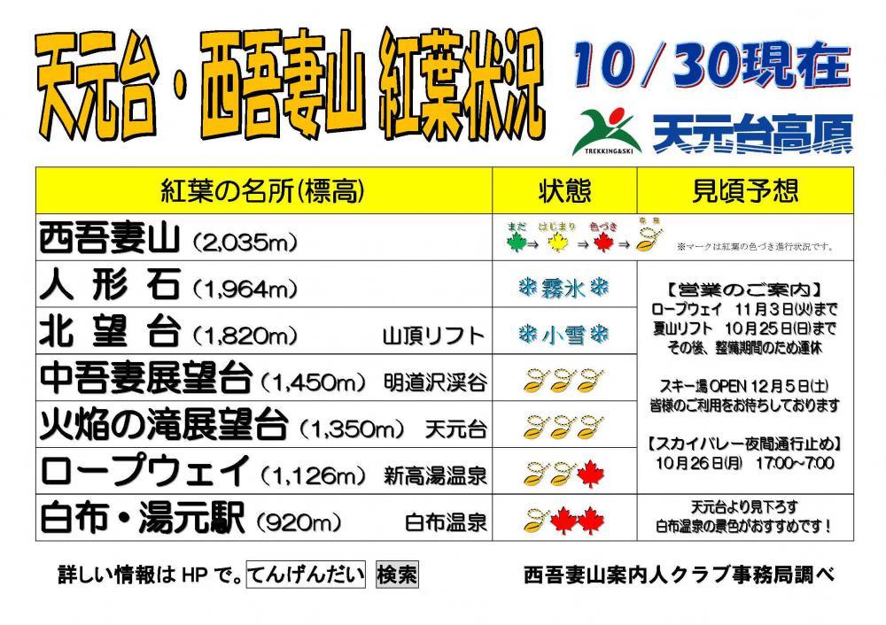 西吾妻山天元台紅葉情報(今季最終)10月30日更新:画像