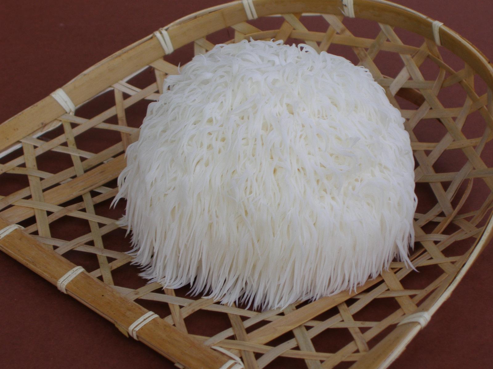 【売】鮭川村産山伏茸|1株(約90〜100g)〜:画像