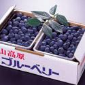 【売】鶴岡市産無農薬ブルーベリー|7月〜(1kg〜):画像