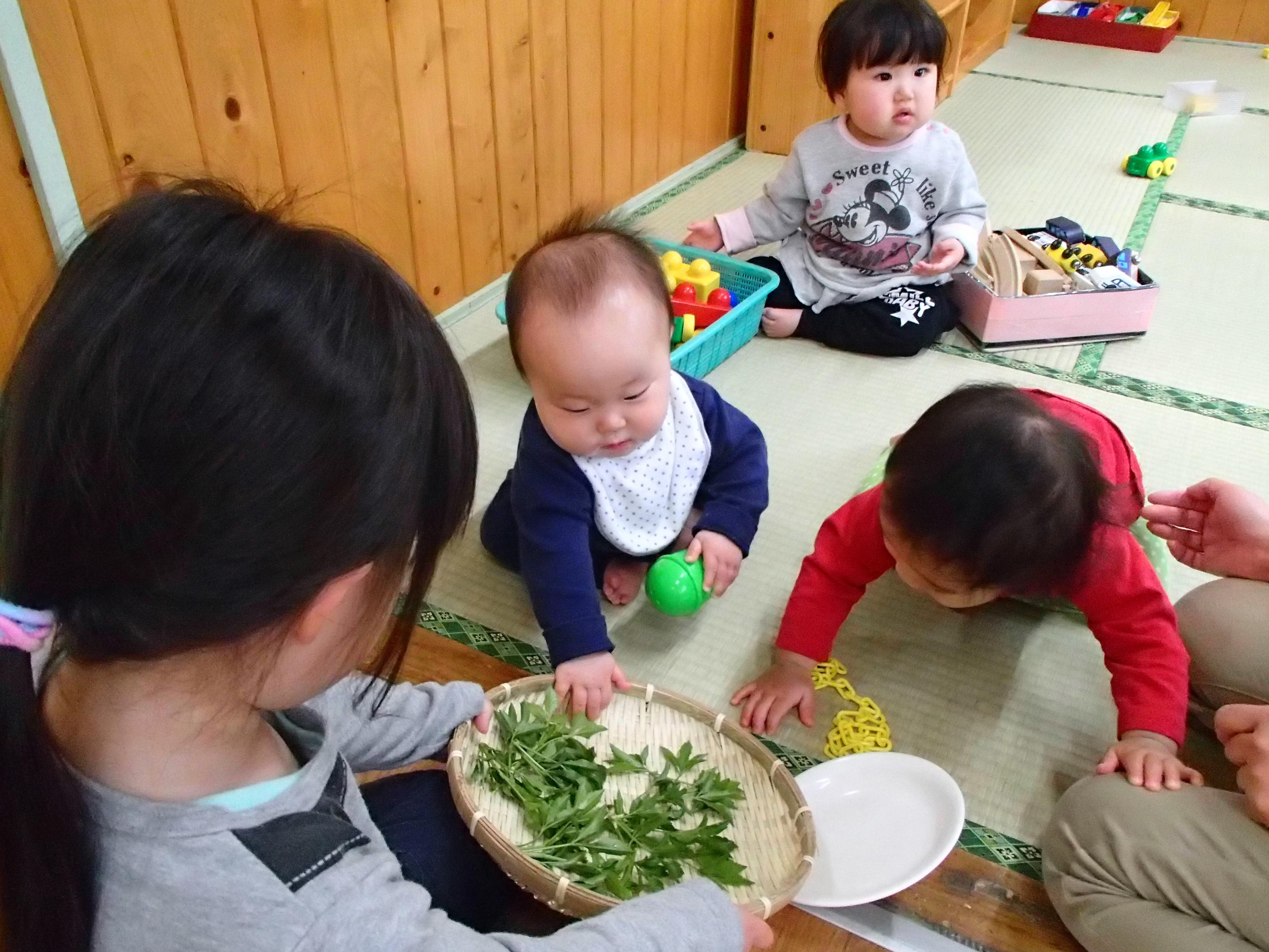 郷土料理を食べよう!