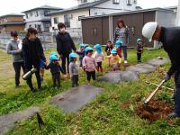 たけのこ掘って、園庭であく抜き体験