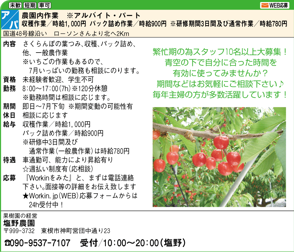 【アルバイト募集】さくらんぼ&いちご農作業:画像