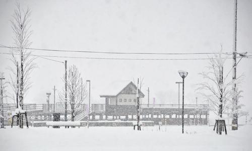 春なのに・・・雪景色再び。