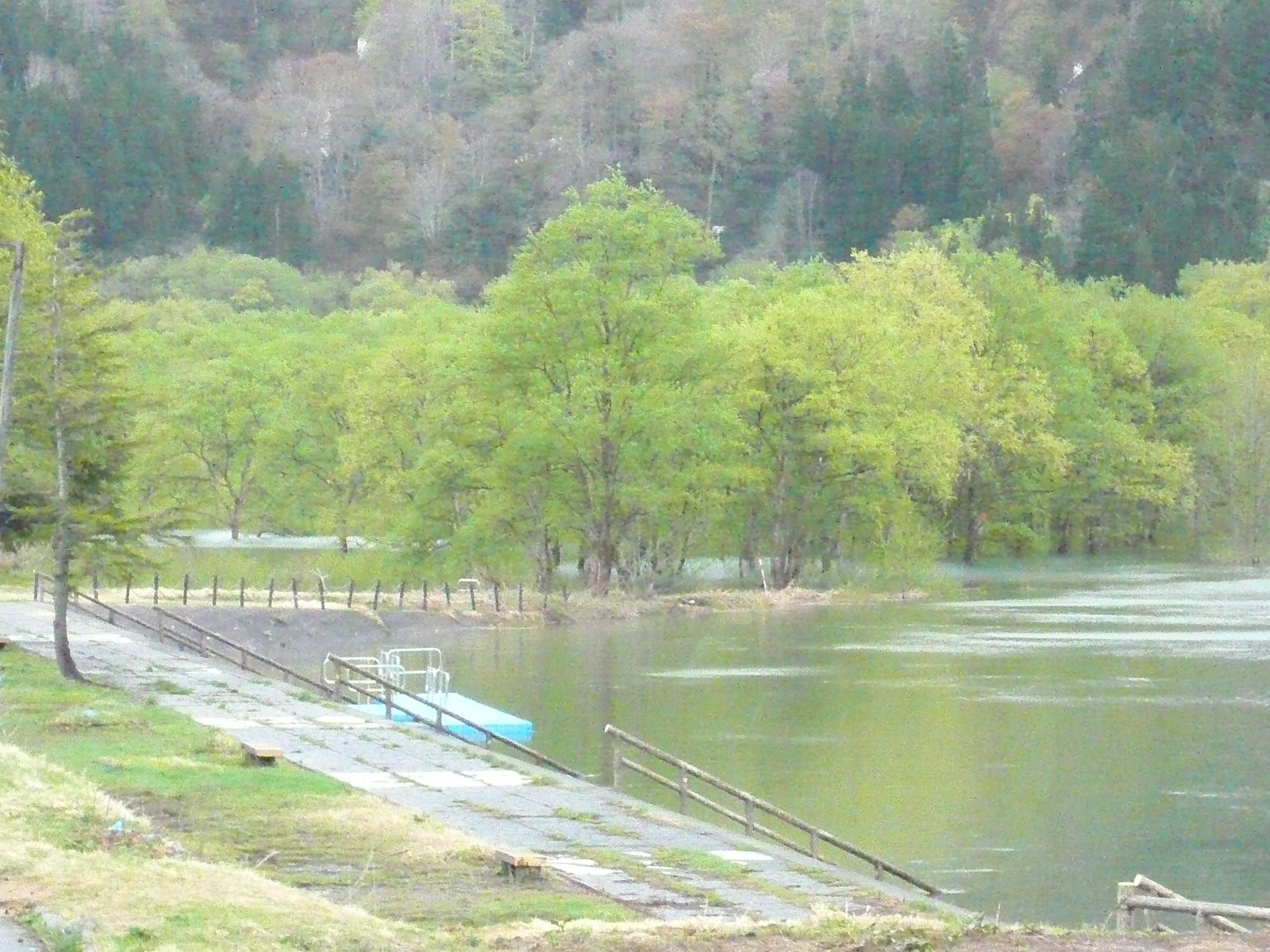 白川ダム湖畔マラソン大会開催のお知らせ