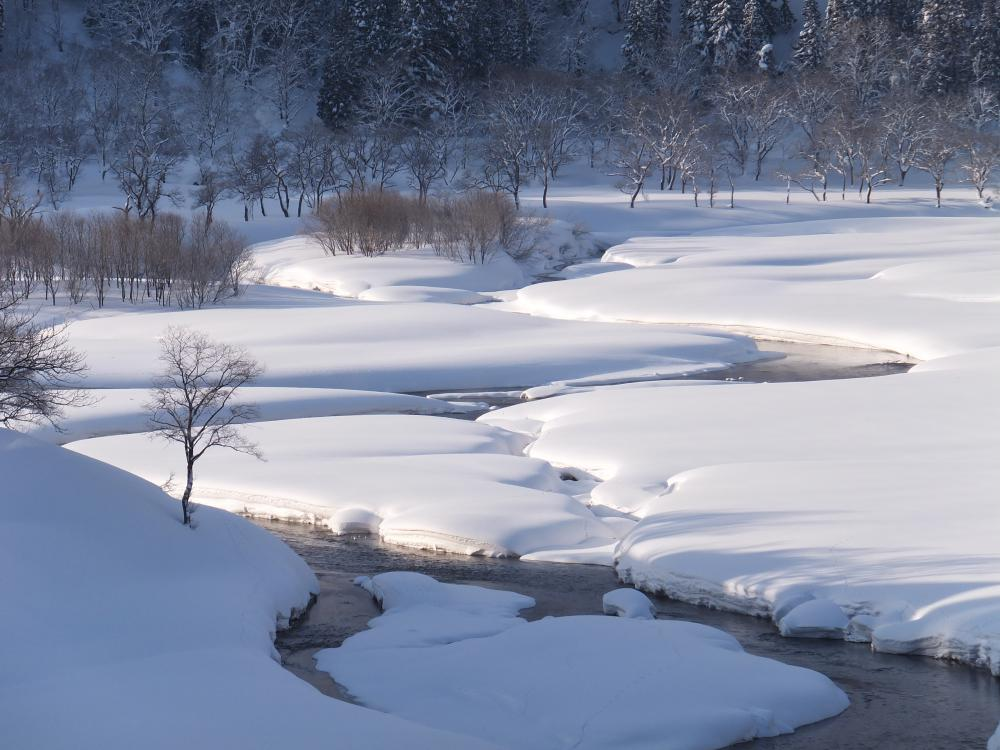 そろそろ冬景色ともお別れ。まだ間に合うシャッターチャンス。:画像