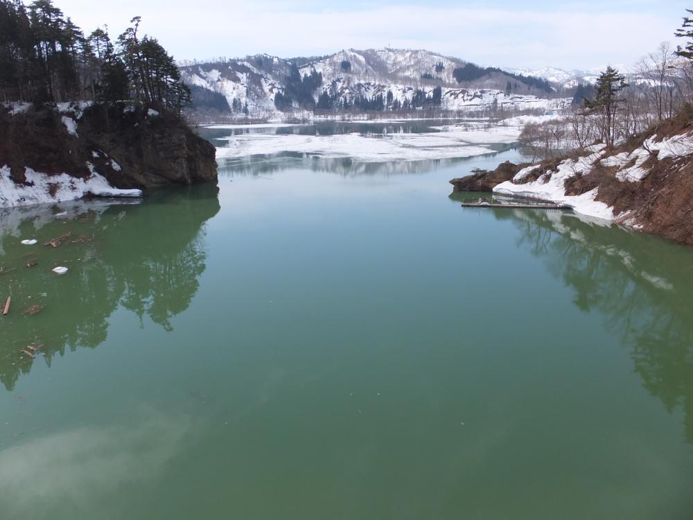 白川ダム湖 間もなく満水 幻想の世界へ レッツゴー!:画像