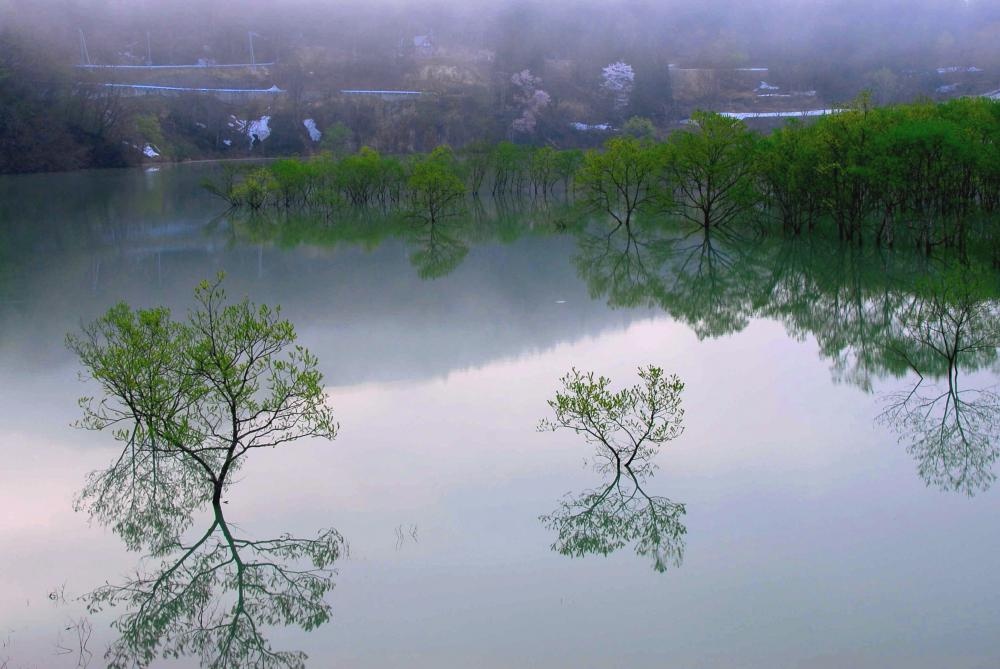 明日は源流の森 森の感謝祭:画像
