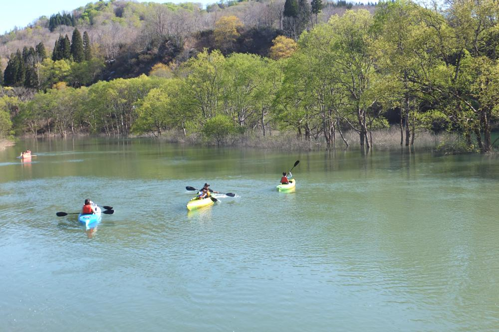 湖面をスイスイ  気ぃ持ちイイーッ 白川湖のカヌー大絶賛