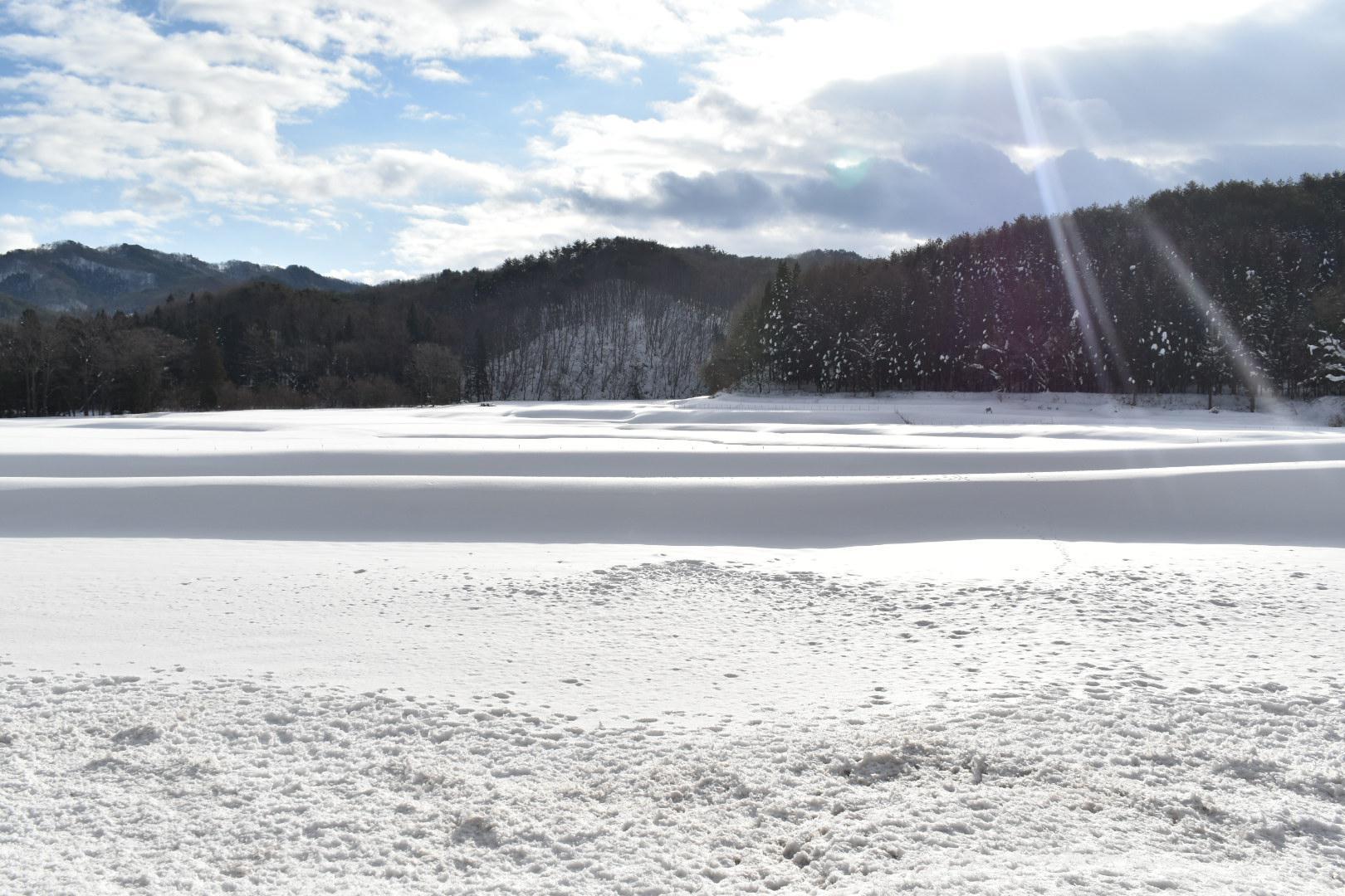 雪景ーSekkeiー