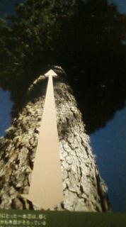 「日本の美意識・江戸の粋」の画像