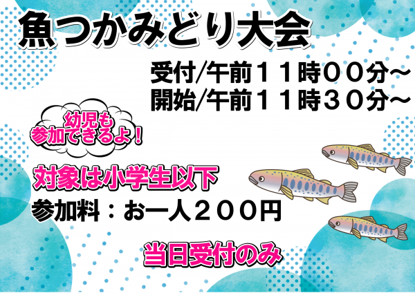 关于长井水祭鱼tsukamidori大会:图片