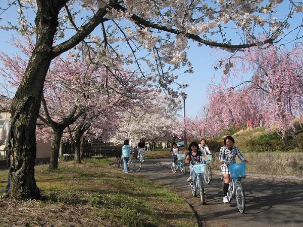 2016年 「まほろばの緑道・サイクリング安全祈願祭」:画像