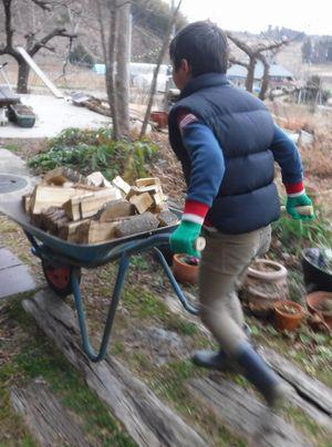 里山日記・・・来年か再来年に向けて「薪づくり」:画像