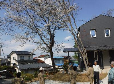【郡山市富久山・ドミノY邸 】 引渡し日、庭の桜が満開でお出迎え/