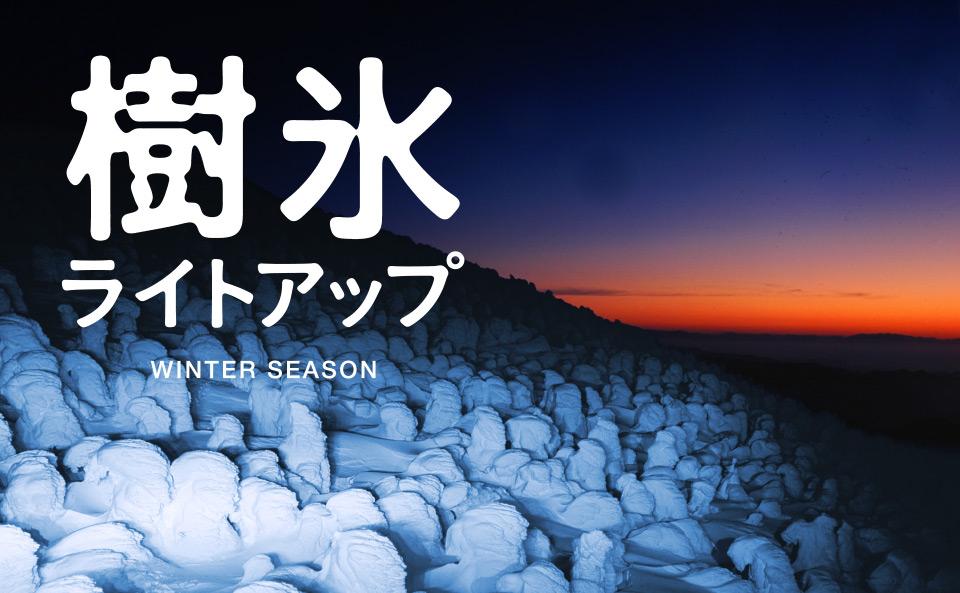 ☆ 樹氷ライトアップ | 蔵王ロープウェイ☆