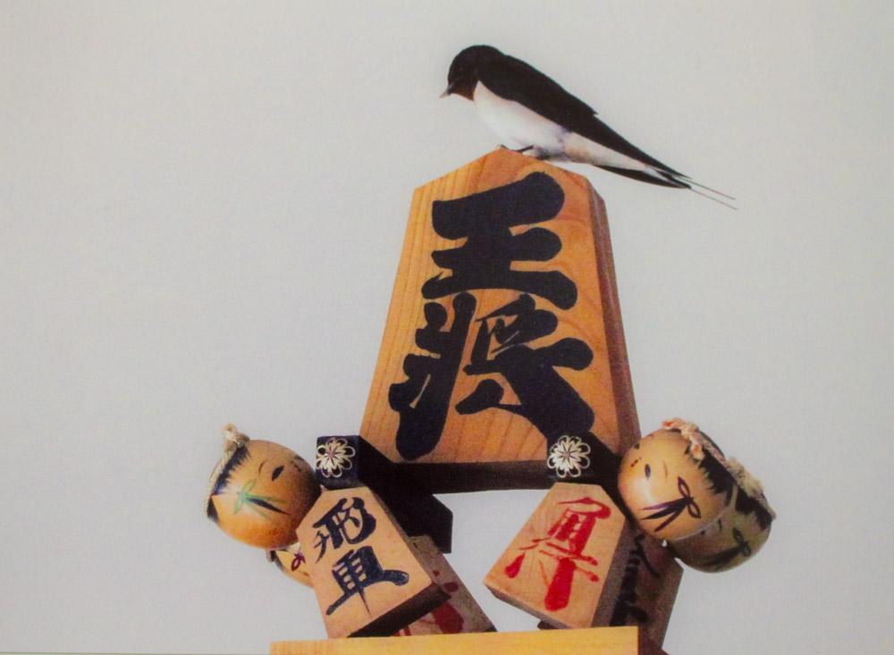 ツバメと将棋の駒:画像