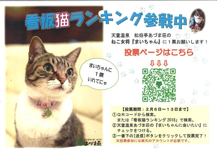「全国の宿 自慢の看板猫ランキング」結果発表