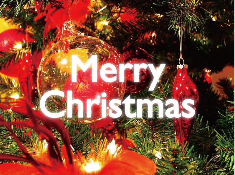【12/24・25限定】クリスマスプラン受付中!