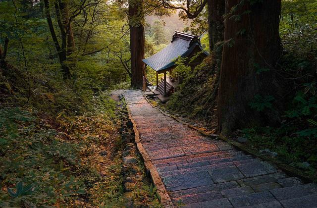 【10/26〜11/9】国宝拝観!羽黒山へ直行バスが運行します!