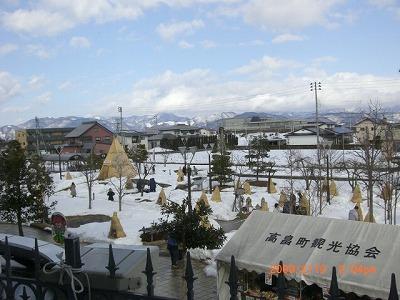 ◆『動画』冬咲きぼたん風景 /:/:/