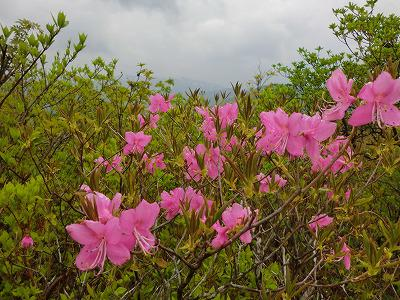 ◆豪士山登山ガイド◆
