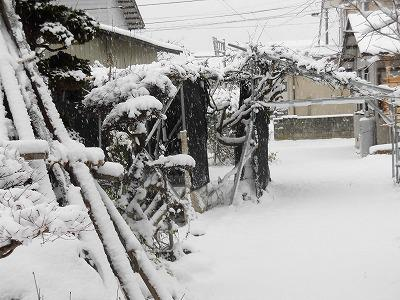 ◆いよいよ本格的な雪か◆