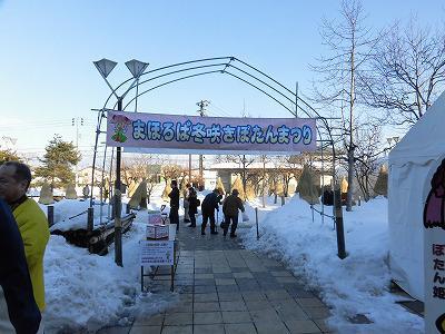 ◆高畠名物  冬咲ボタン祭り開幕です。◆