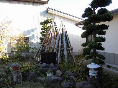 ◆庭の雪囲い終わりました。◆