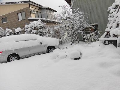 ◆今年初めてのまとまった積雪です。◆
